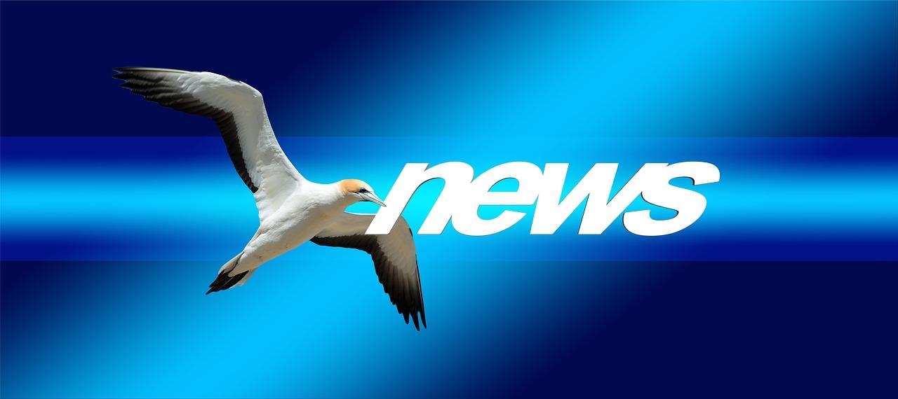 חדשות